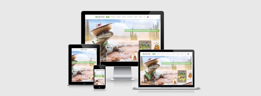 Relaunch der Website der Cactus GmbH