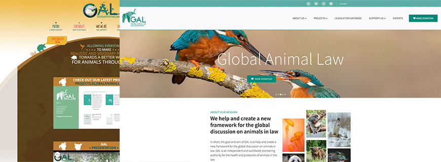 Global Animal Law – in neuem Design für Tierschutzrecht